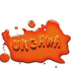 Chow Nasty - Ungawa....the Party Starts Right F**king Now flac album
