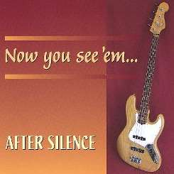 After Silence - Now You See 'Em... Now You Don't flac album
